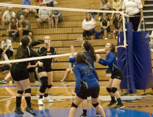 Lady Panthers Volleyball