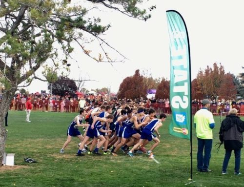 Varsity Cross Country Team Performs at State